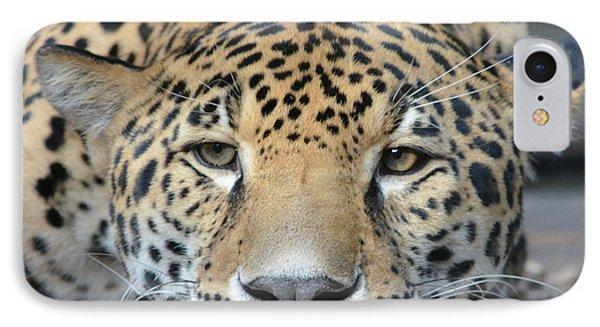 Sleepy Jaguar IPhone Case