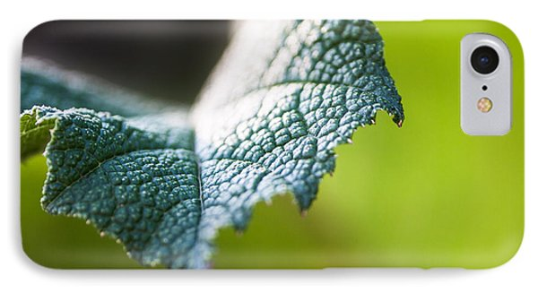 Slice Of Leaf IPhone Case