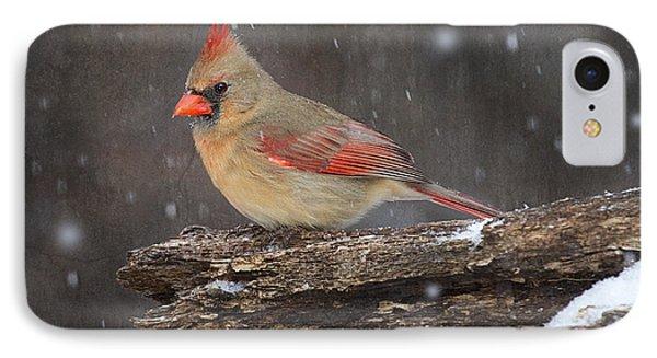 Snowy Cardinal IPhone Case