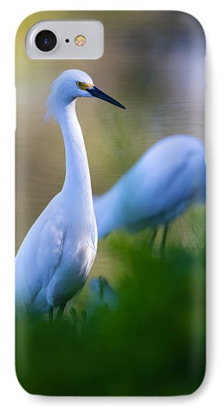 Snowy Egret On A Lush Green Foreground IPhone Case