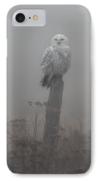 Snowy Owl  In The Mist IPhone Case