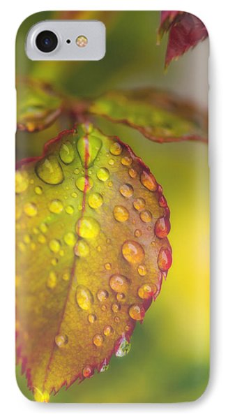Soft Morning Rain IPhone Case