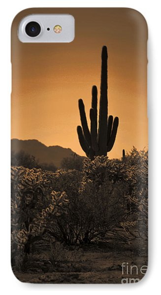Solitary Saguaro IPhone Case