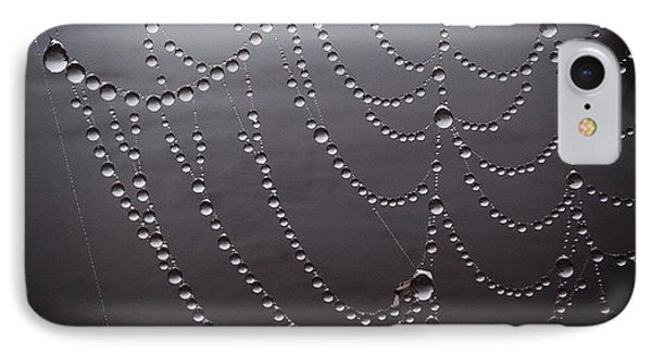 Dew On A Spider Web IPhone Case