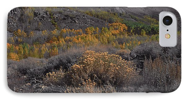 South Fork Valley Gold IPhone Case