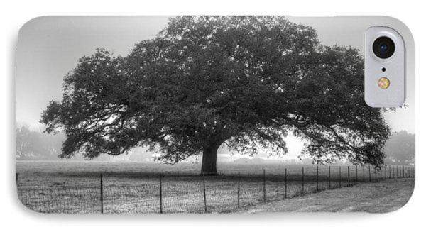 Spanish Oak Black And White IPhone Case