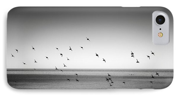 Spectacle Of Flight IPhone Case