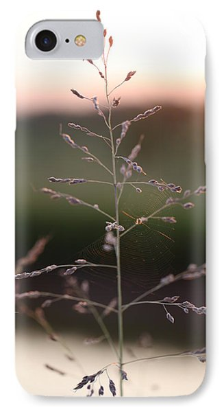 Spider Web And Wild Grass IPhone Case