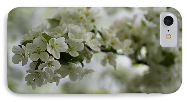 Spring Bloosom IPhone Case