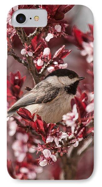 Spring Blossom Chickadee IPhone Case