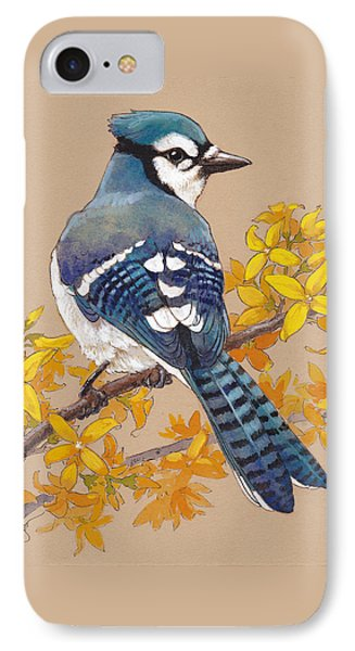 Spring Blue Jay 3 IPhone Case