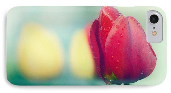 Spring Colour IPhone Case