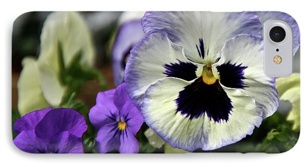 Spring Pansy Flower IPhone Case