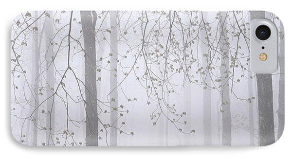 Spring Woodland Fog 2 IPhone Case