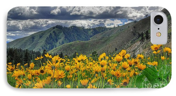 Springtime At Gallagher IPhone Case