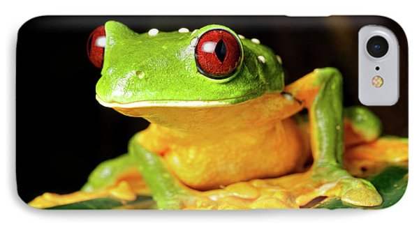 Spurell's Flying Frog (agalychnis IPhone Case