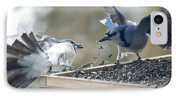 Squabbling Jays IPhone Case