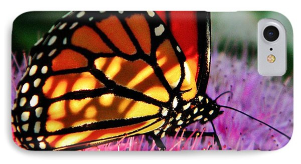 Stained Glass Monarch  IPhone Case