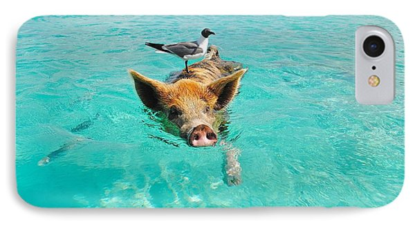 Staniel Cay Swimming Pig Seagull Fish Exumas IPhone Case
