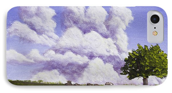 Storm Clouds Over Maine Blueberry Field IPhone Case