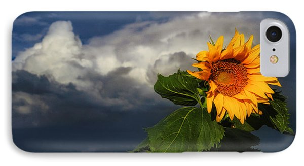 Stormy Sunflower IPhone Case