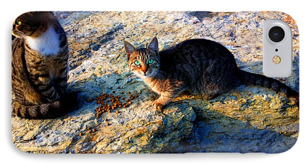 Strong-willed Cat IPhone Case