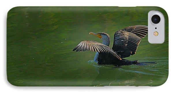 Strutting Cormorant IPhone Case
