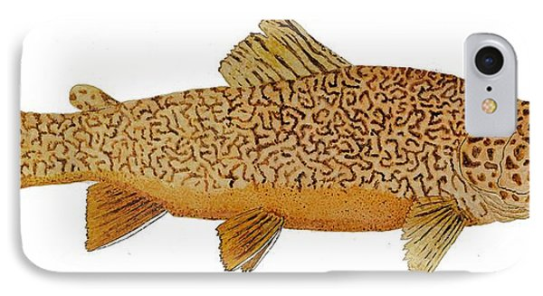 Study Of A Tiger Trout IPhone Case