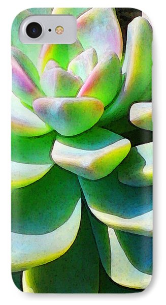 Succulent - Plant Art By Sharon Cummings IPhone Case