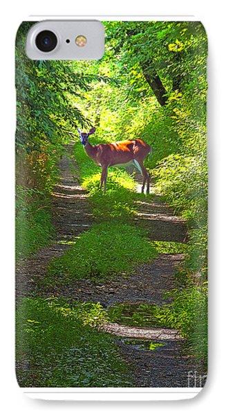 Summer Deer IPhone Case
