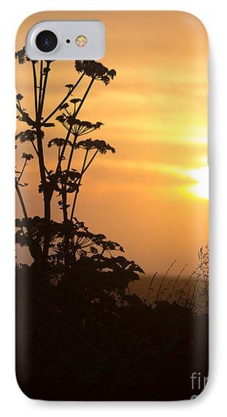Summer Evening IPhone Case