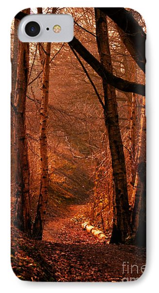 Summer In Sots Hole IPhone Case