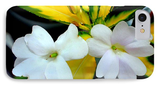 Sun Patiens Spreading White Variagated IPhone Case