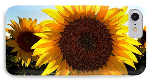 Sun Shine 3 Wc 2  IPhone Case