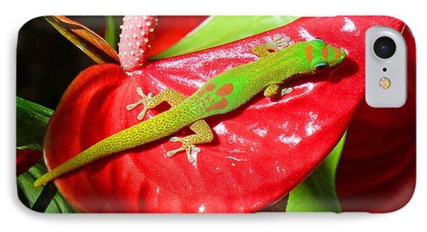 Sunbathing Gecko IPhone Case