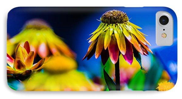 Sundaze Flame Strawflower IPhone Case