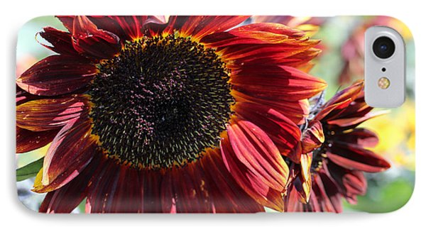 Sunflower 15 IPhone Case