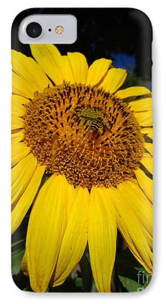 Sunflower Visitor Series 3 IPhone Case