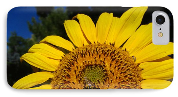 Sunflower Visitor Series 4 IPhone Case