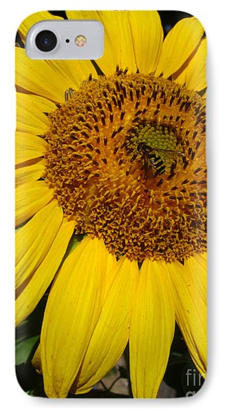 Sunflower Visitor Series 5 IPhone Case