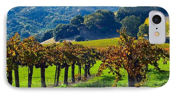 Sunny Autumn Vineyards IPhone Case