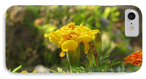 Sunny Marigold IPhone Case