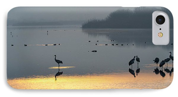 Sunrise Over The Hula Valley Israel 1 IPhone Case