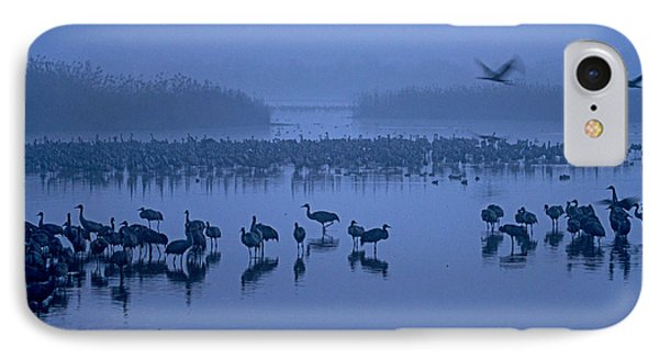 Sunrise Over The Hula Valley Israel 4 IPhone Case