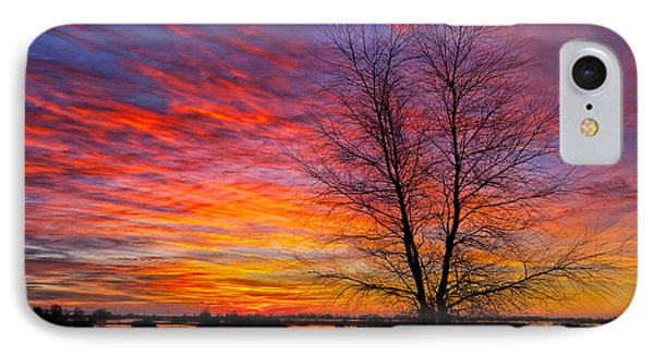 Sunrise In The Sacramento Valley IPhone Case