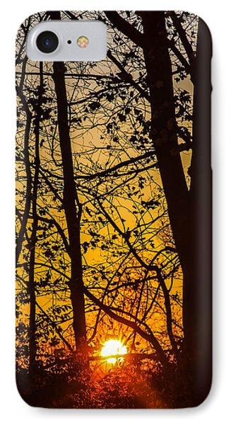 Sunrise Through Trees IPhone Case
