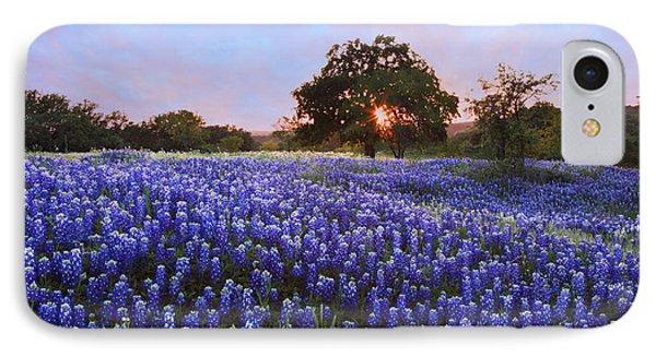 Sunset In Bluebonnet Field IPhone Case