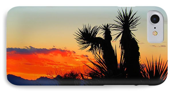 Sunset In Golden Valley IPhone Case