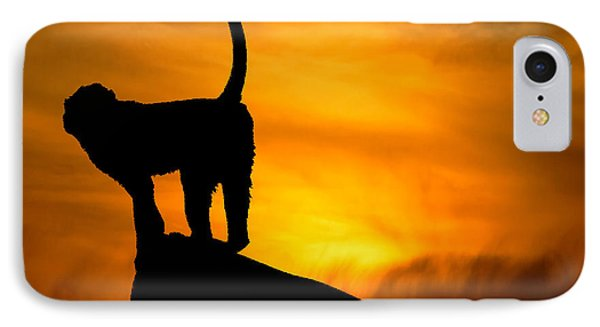 Monkey / Sunset IPhone Case