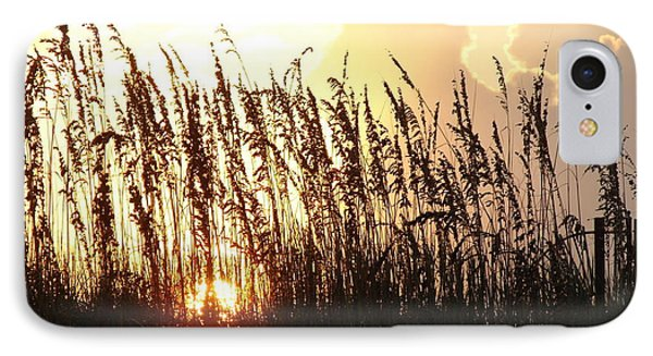 Sunset On The Dunes St. Augustine IPhone Case